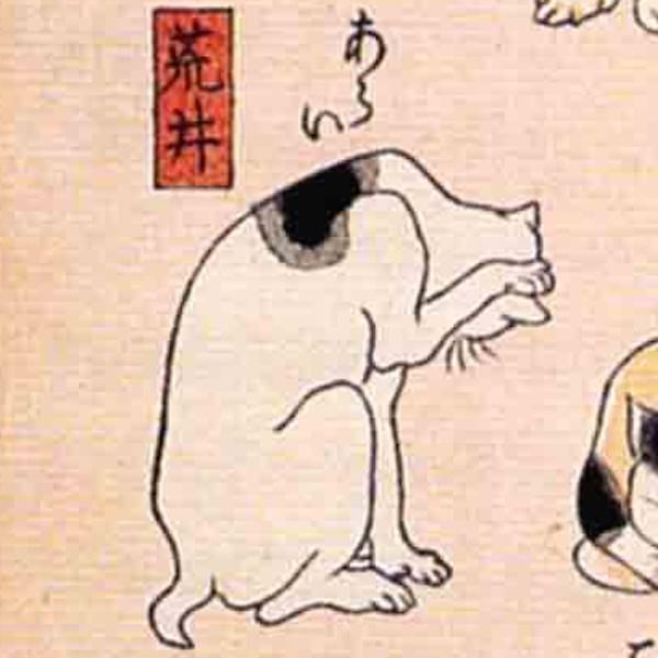 荒井/其のまま地口 猫飼好五十三疋(歌川国芳 画)の拡大画像