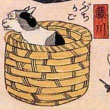 藤川 猫飼好五十三疋(歌川国芳の画)
