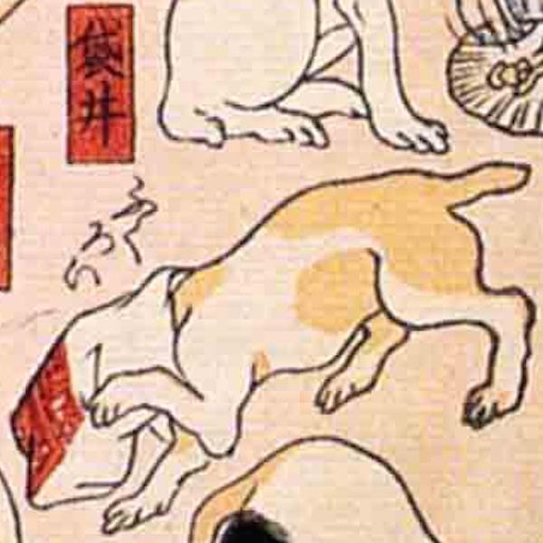 袋井/其のまま地口 猫飼好五十三疋(歌川国芳 画)の拡大画像