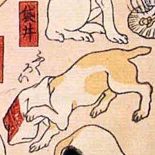 袋井 猫飼好五十三疋(歌川国芳の画)