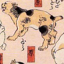 原 猫飼好五十三疋(歌川国芳の画)