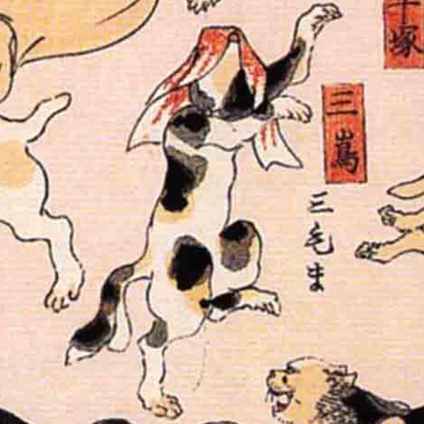 三島/其のまま地口 猫飼好五十三疋(歌川国芳 画)の拡大画像