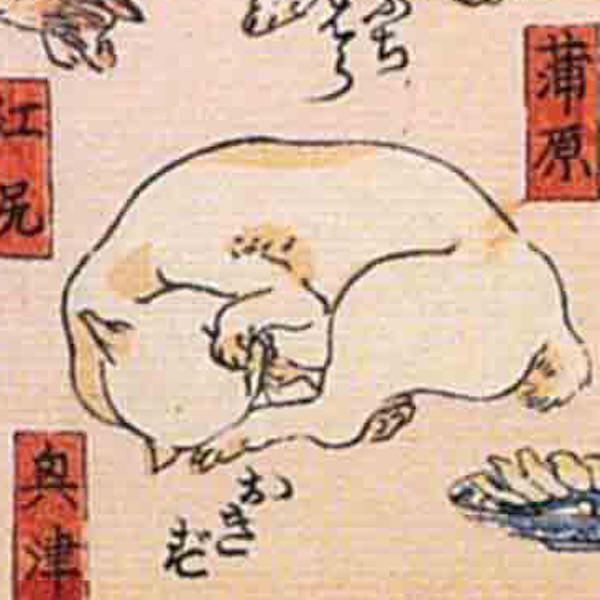 興津/其のまま地口 猫飼好五十三疋(歌川国芳 画)の拡大画像
