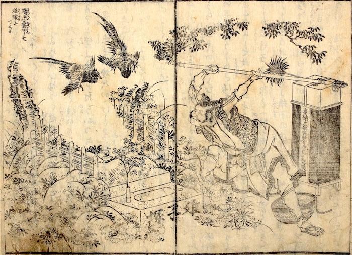 『阿波濃鳴門(あわのなると)』(柳亭種彦 文/葛飾北斎 画)