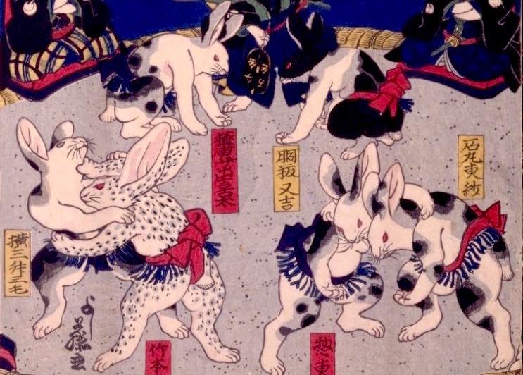 『兎絵 勧進大相撲之図』(歌川芳藤 画)の兎を拡大(拡大画像)