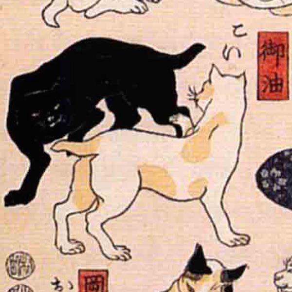 御油/其のまま地口 猫飼好五十三疋(歌川国芳 画)の拡大画像