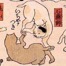 石薬師 猫飼好五十三疋(歌川国芳の画)