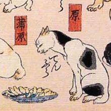 蒲原 猫飼好五十三疋(歌川国芳の画)