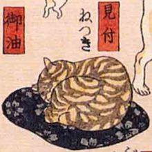見付 猫飼好五十三疋(歌川国芳の画)