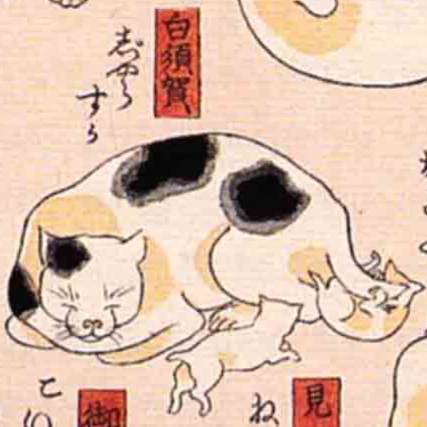 白須賀/其のまま地口 猫飼好五十三疋(歌川国芳 画)の拡大画像