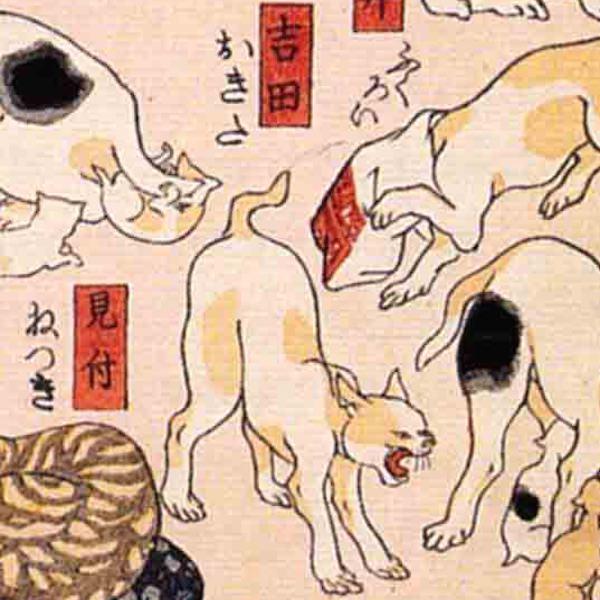 吉田/其のまま地口 猫飼好五十三疋(歌川国芳 画)の拡大画像